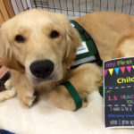 "Kaia, a golden retriever, poses for a photo alongside a flyer reading ""My first day in Child Life."""