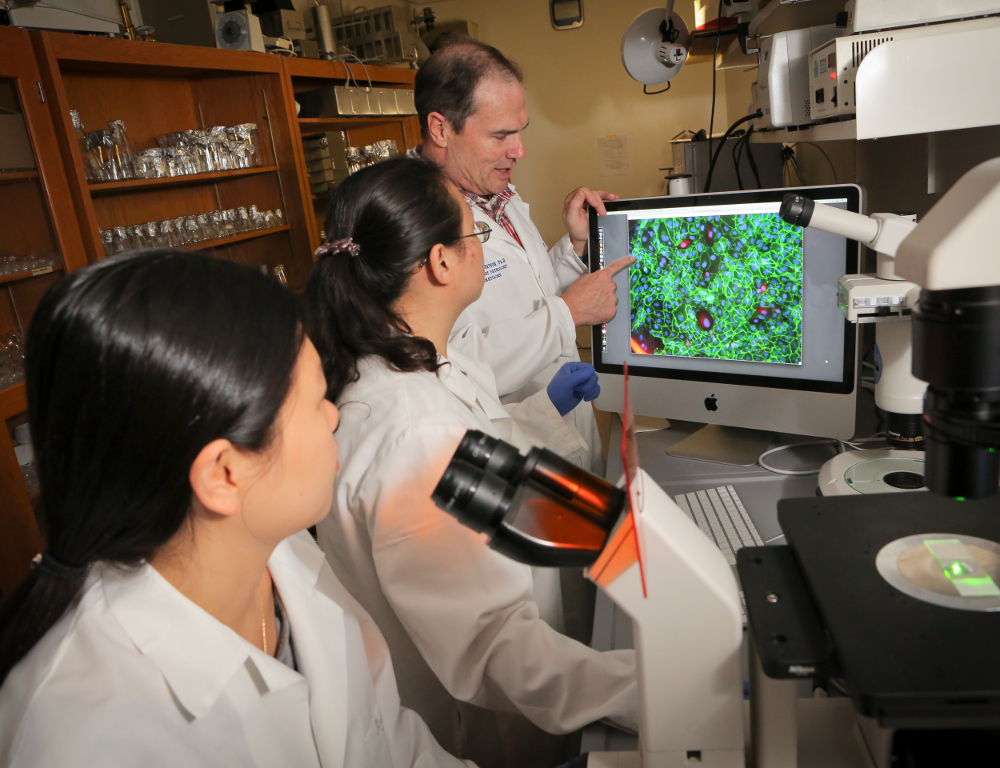 A man in a white coat points to a computer screen that displays an enlarged image from a microscope. Two women in white coats look at the screen, one of them standing at a microscope.