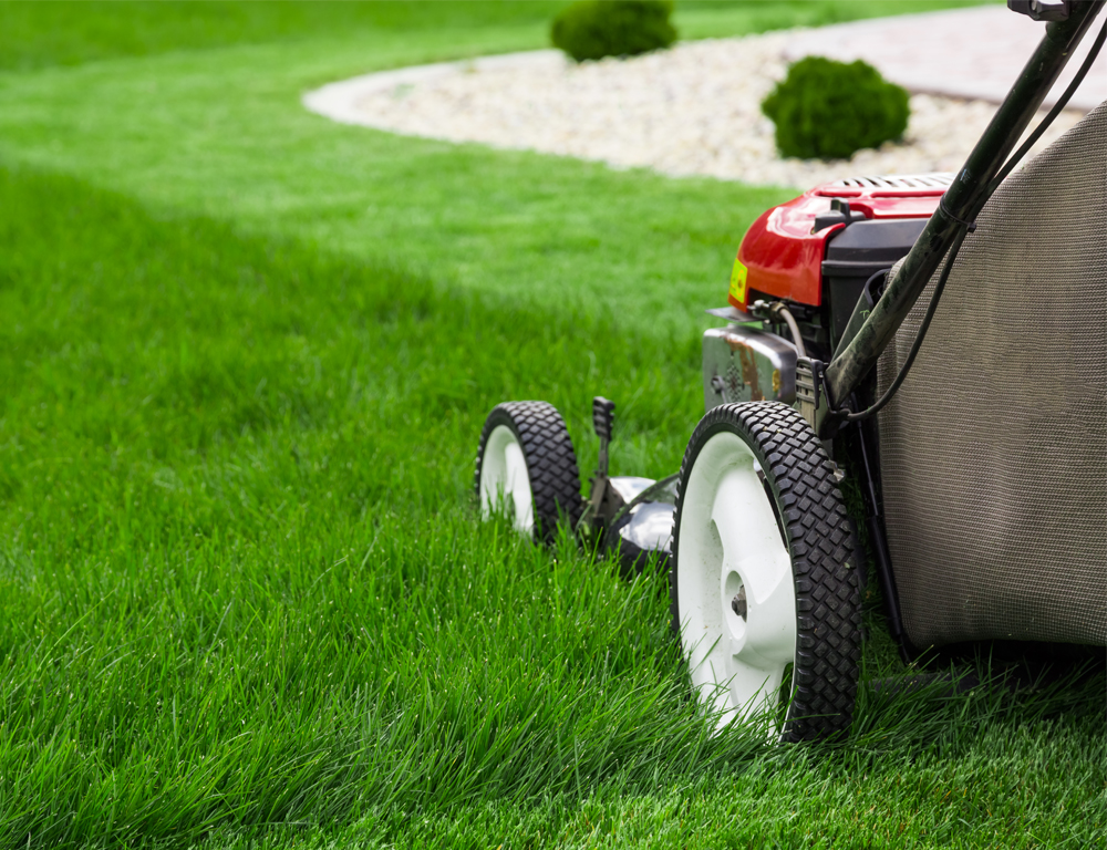 A push-style lawnmower sits in grass, part of which has been mowed, part unmowed.