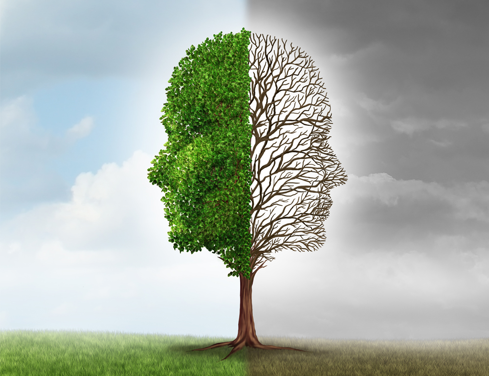 An illustration of a tree, each side of which has the profile of a face. On the left, the face is made of green leaves and cast against a blue background with white clouds. On the right, the face is made solely of leafless branches, cast against a gray sky.