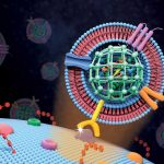 Extracellular vesicle-like metal-organic framework nanoparticles are developed for the intracellular delivery of biofunctional proteins. The biomimetic nanoplatform can protect the protein cargo and overcome various biological barriers to achieve systemic delivery and autonomous release.