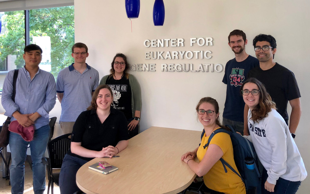 A group of graduate students are pictured sitting and standing around a table with the words Center for Eukaryotic Gene Regulation on the wall behind them.