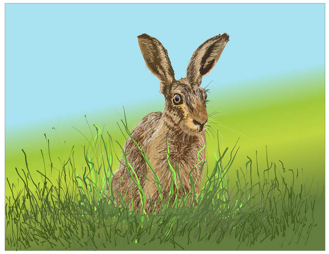 A painting by Seamus Carmichael depicts a rabbit with large ears sitting in ta field of grass.