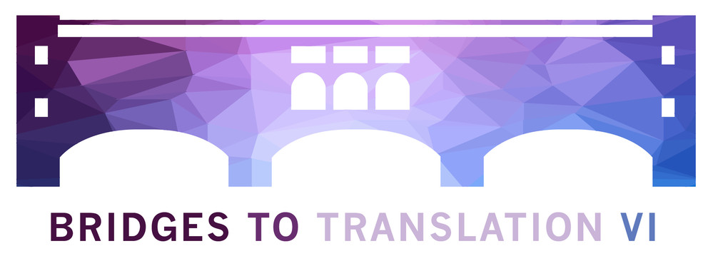 A graphic depicts a bridge and has the text Bridges to Translation VI underneath it.