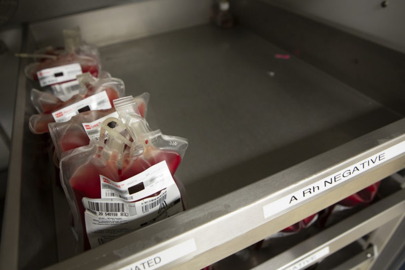 Several units of blood with labels are lined up in a metal tray.