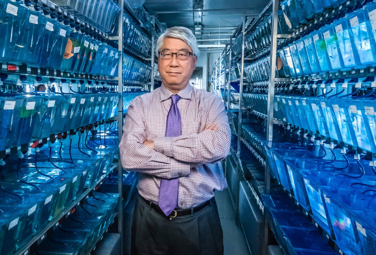 Keith Cheng stands in the College of Medicine's zebrafish functional genomics core.