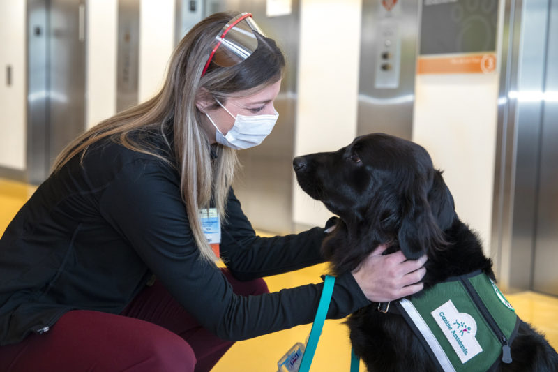 Stacy Gloudemans crouches down and places her hands on the back of Pilot, a facility dog, who wears a service vest. Elevators are in the background.
