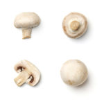 Six mushrooms are pictured against a white surface.