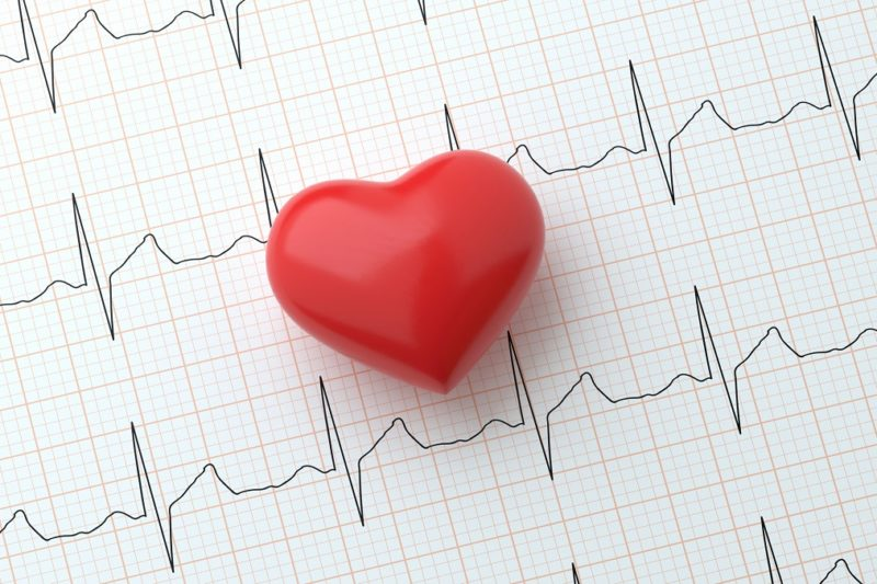Heart on electrocardiogram that shows heart rhythm.